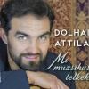 Dolhai Attila koncert 2020-ban az Operettszínházban - Jegyek itt!