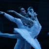 Moszkvai Bolsoj Balett Hattyúk tava 2020-ban Budapesten - Jegyek a vetítésre itt!