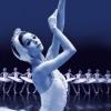 White Swan – Az Izrael Balett Hattyúk tava előadása a Nemzeti Színházban - Jegyek itt!