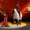 Spanyol Királyi Lovasiskola lovas showja 2017-ben az Aréna színpadán! Jegyek itt!