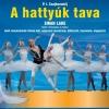 A hattyúk tava 2019-ben Budapesten a BOK Csarnokban - Jegyek az Orosz Nemzeti Balett előadására itt!
