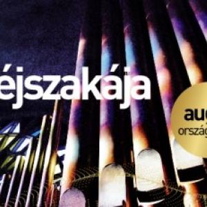 Sétahajón, piacon és autóbusz-pályaudvaron lesz INGYENES orgona koncert!